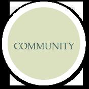 whysyk-community